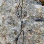 Sphretnecklace