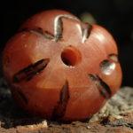 Pemameloniss